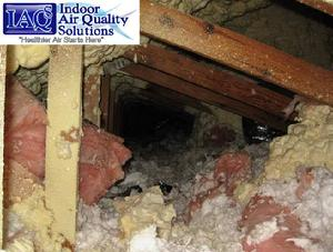 #IAQS SPF Spray Polyurethane Foam Insulation Inspections Indoor Air Quality Solutions, IAQS